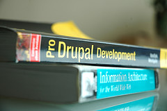 Pro Drupal Development and Information Architecture